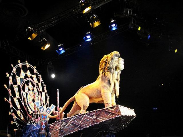 The Lion King during the Show