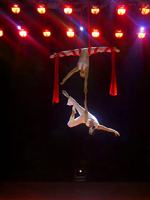 Acrobatic Shows