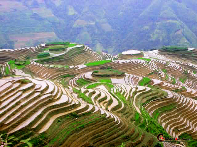 Longsheng rice terrace for What are terraces