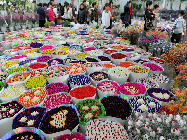 Kunming Birds and Flowers Market