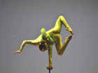 Shanghai Acrobatic show